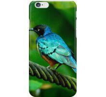 Superb Starling iPhone Case/Skin