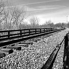 Tracks by Richard Skoropat