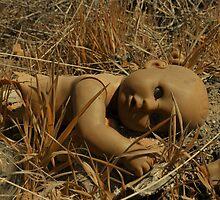 Desert Baby  by Cody  VanDyke