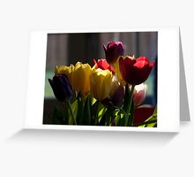 Backlit Tulip Bunch Greeting Card
