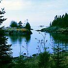 Sweetgrass Cove, Northern Minnesota by Dave Lechko