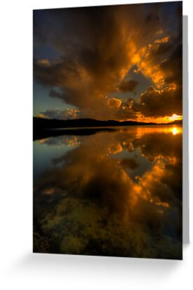 Golden Portrait - Narrabeen Lakes, Sydney - The HDR Experience by Philip Johnson