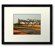 India Highway (with Tamarind Trees) Framed Print