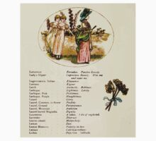 Language of Flowers Kate Greenaway 1884 0030 Descriptions of Specific Flower Significations One Piece - Short Sleeve