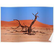 Dead Wood in the Soussevlei Desert, Namibia Poster