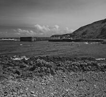 Burnmouth Harbour (Mono) by WatscapePhoto