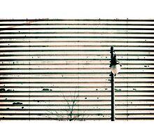 St Catherine East, Montreal Photographic Print