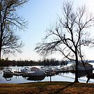 Fall Afternoon At The Yacht Club by PhotosByMendi