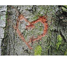 symbolic love  Photographic Print
