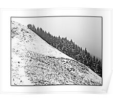 Snowy hillside Poster