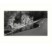 Roadside ice Art Print