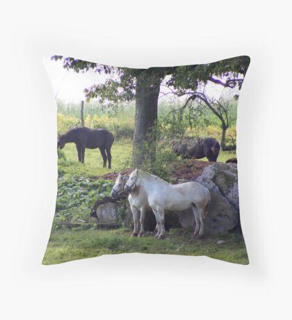 Dozing Percherons Throw Pillow