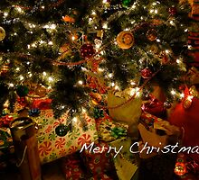 Merry Christmas (Card) by Lynn Armstrong