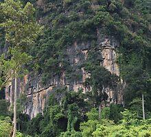 Swiming into the Wild - Thakhek, Laos. by Tiffany Lenoir