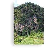 Swiming into the Wild - Thakhek, Laos. Canvas Print
