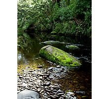 Tahakopa River, The Catlins Photographic Print
