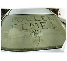 Pollen Time Poster