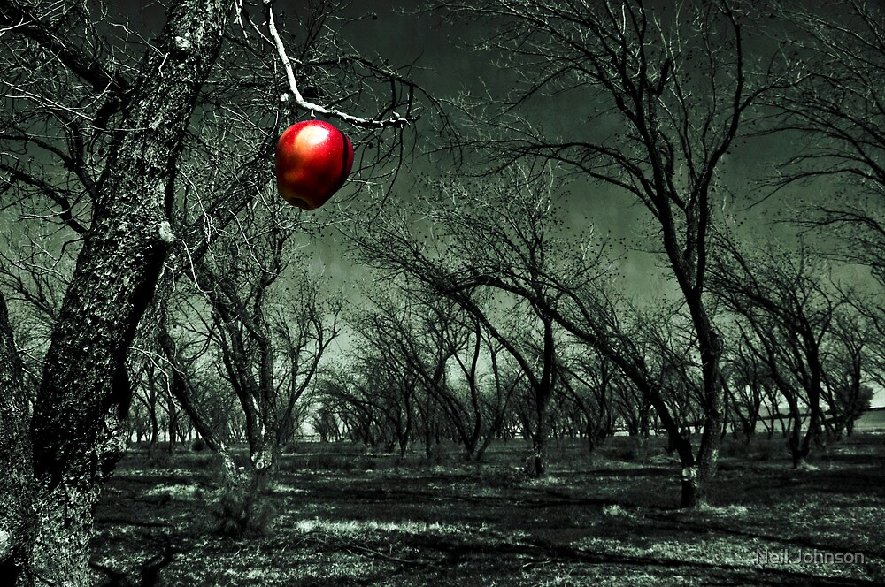 Thee Apple by Neil Johnson
