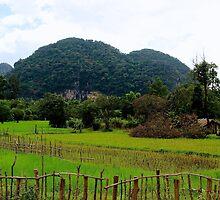 The Green Backcountry - Thakhek, Laos. by Tiffany Lenoir