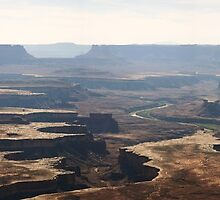 Canyonlands National Park by Dewese Milstead