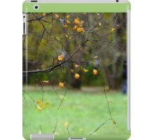 Riverside park iPad Case/Skin