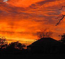Farm Sunrise by Sherene Clow