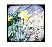 Daffy TTV Art Print