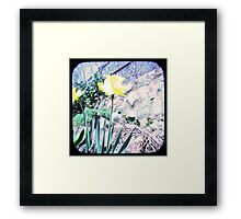 Daffy TTV Framed Print