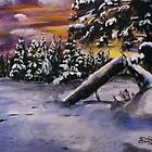 Minnesota Winter by Dave Lechko