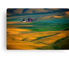 Golden Palouse Canvas Print