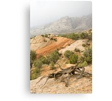 Misty Day at Split Mountain & the Crabsnag Canvas Print
