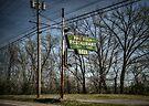 Pine Villa by Eric Scott Birdwhistell
