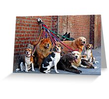 Dogs Greeting Card