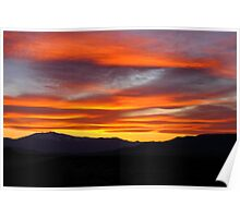 Hawthorne Sunset Poster
