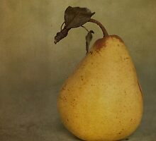 Golden Pear by Jill Ferry