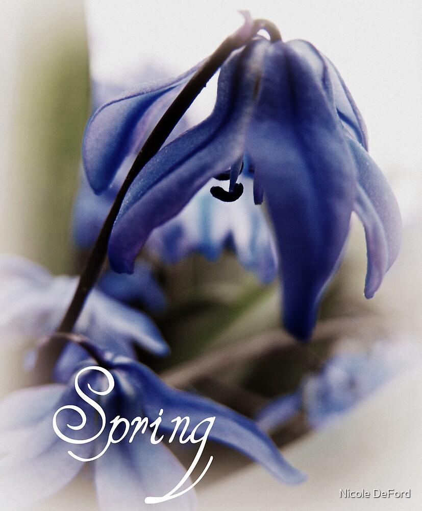 Springs Little Joys  by Nicole DeFord