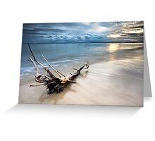 Bribie Island, Queensland Greeting Card