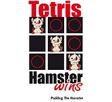 Pudding The Hamster - Tetris Photographic Print
