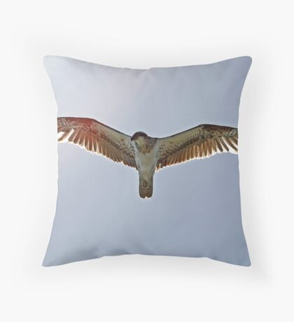 Spread Your Wings and Fly... Throw Pillow