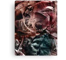 Wings of mystification Canvas Print