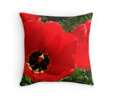Red, Red, Red Tulips  Throw Pillow