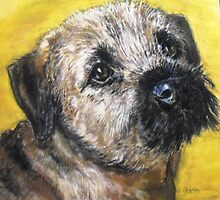 Poppy, border terrier by Jonesy7
