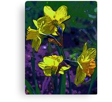Daffodil painting Canvas Print
