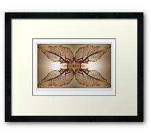 Lacework Framed Print