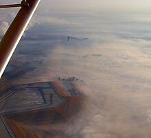 Underneath my wing. by Rudi Venter