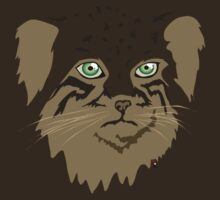 Pallas Cat (Manul) by InkRain