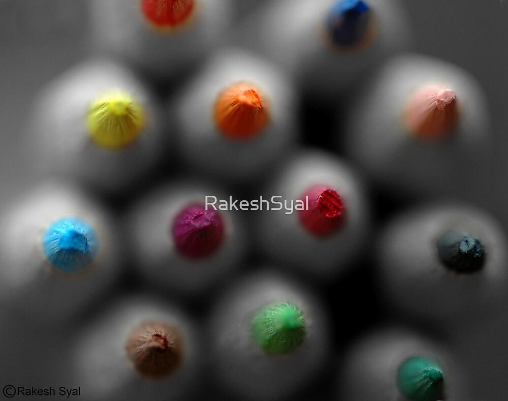 BLUNT HEADS by RakeshSyal