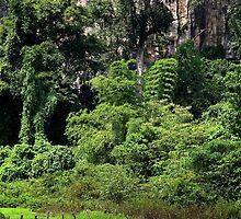 Swiming into the Wild II - Thakhek, Laos. by Tiffany Lenoir