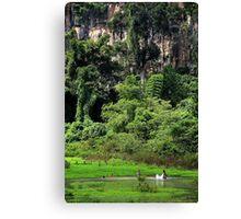 Swiming into the Wild II - Thakhek, Laos. Canvas Print