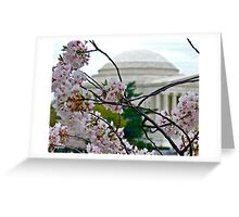 Cherry Blossom #3 Greeting Card